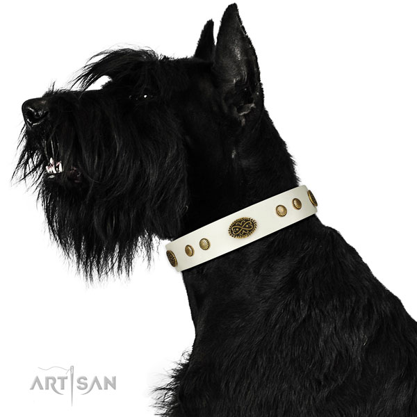 Reliable D-ring on leather dog collar for comfortable wearing