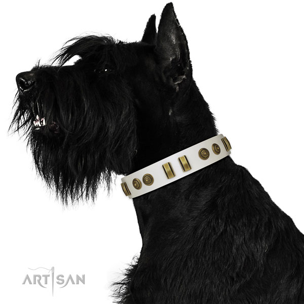 Handy use dog collar of genuine leather with extraordinary adornments