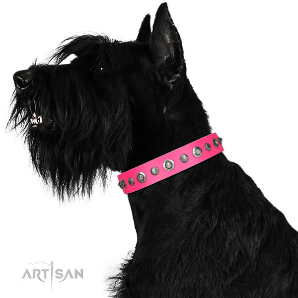 Full grain natural leather collar with reliable D-ring for your stylish four-legged friend