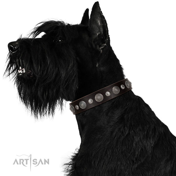 Fashionable leather dog collar with corrosion proof hardware