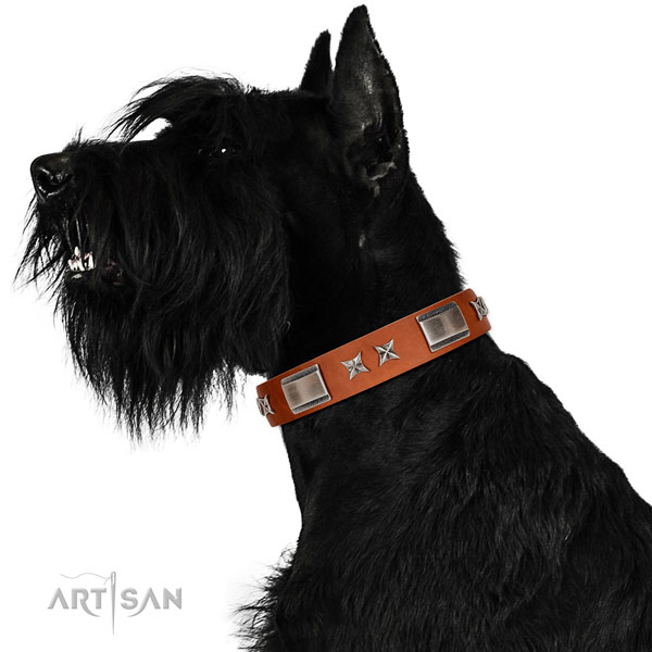 Everyday use flexible full grain leather dog collar with embellishments