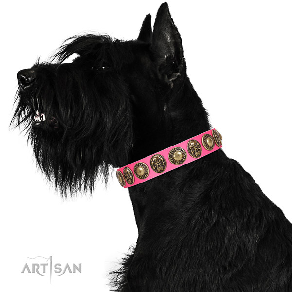 Exceptional full grain natural leather collar for your handsome doggie