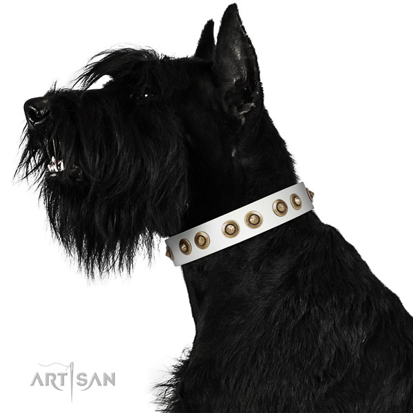 Easy wearing dog collar of genuine leather with impressive embellishments