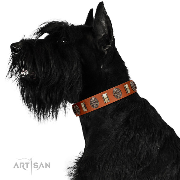 Genuine leather dog collar with stylish design decorations