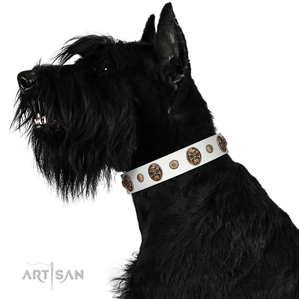 Easy to adjust dog collar handmade for your beautiful four-legged friend