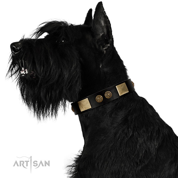 Easy wearing dog collar of natural leather with unusual embellishments