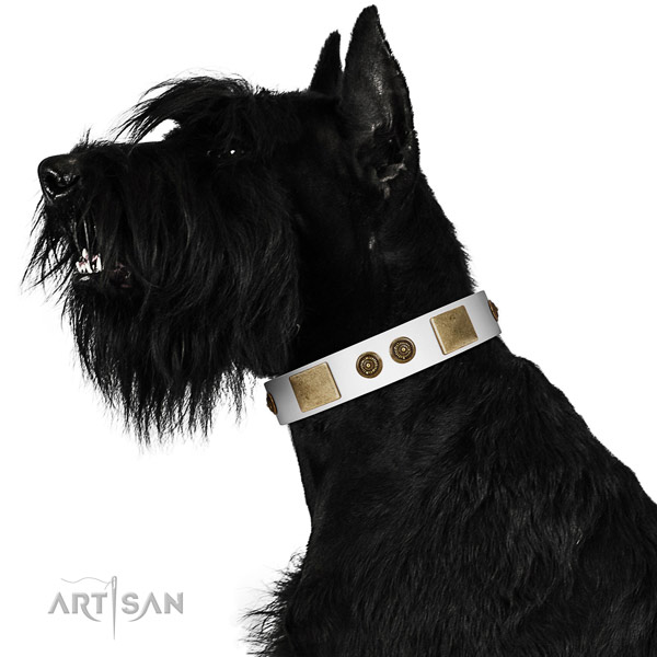 Fashionable dog collar handcrafted for your attractive pet