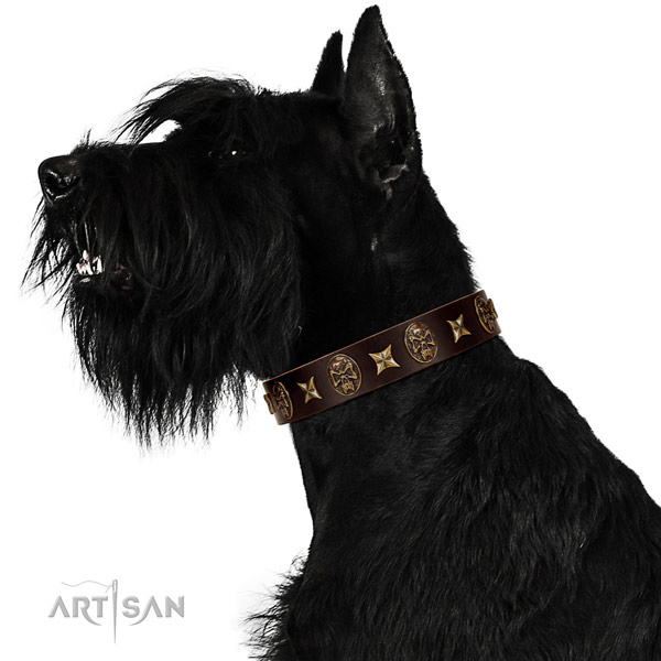 Unique full grain natural leather dog collar with embellishments