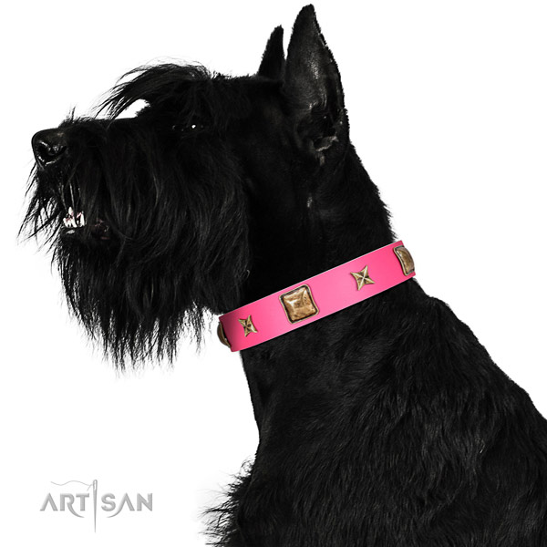 Leather dog collar of flexible material with stylish decorations