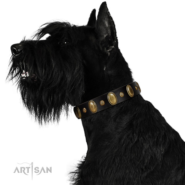 Leather dog collar of reliable material with significant embellishments