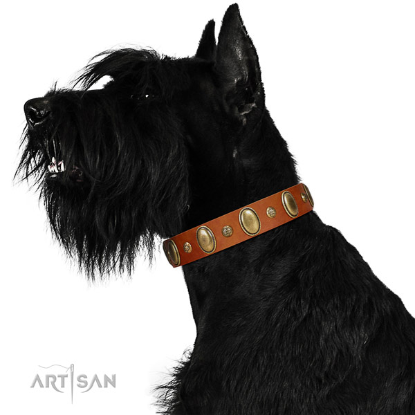 Handcrafted genuine leather dog collar with rust resistant D-ring
