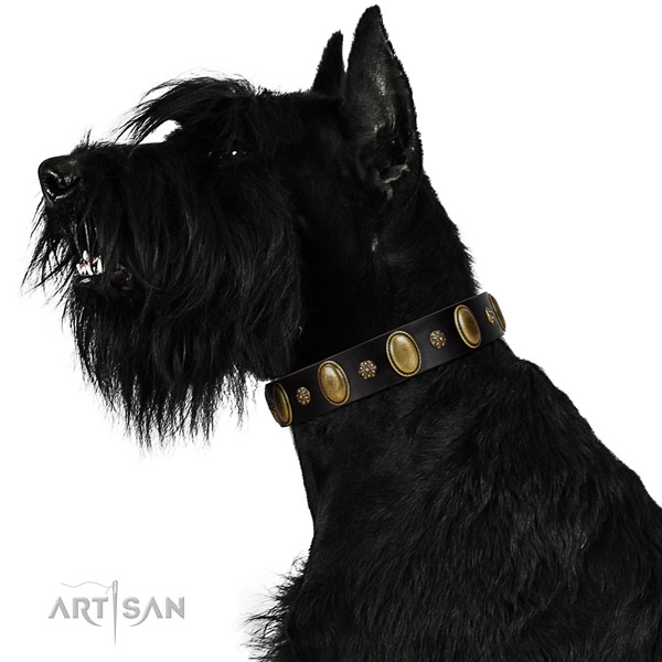 Everyday use top notch natural genuine leather dog collar with studs