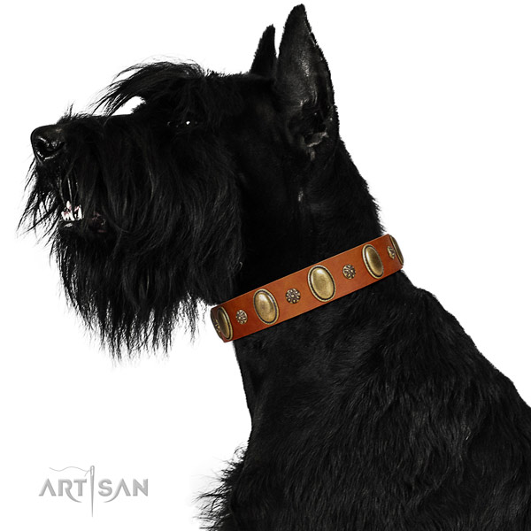 Comfy wearing flexible full grain genuine leather dog collar with embellishments