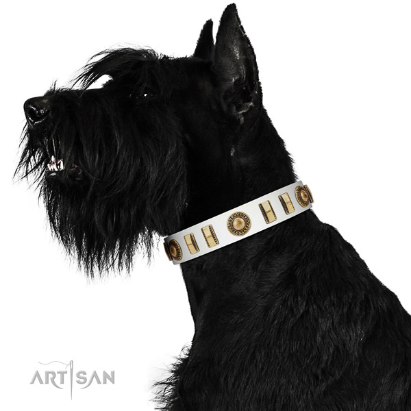 Adorned genuine leather dog collar with durable traditional buckle