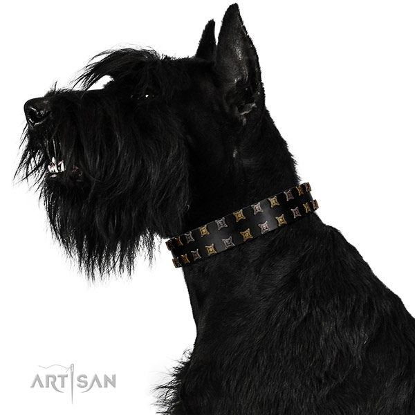 Reliable full grain leather dog collar with decorations for your pet