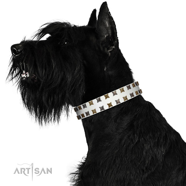 Soft to touch natural leather dog collar with embellishments for your four-legged friend