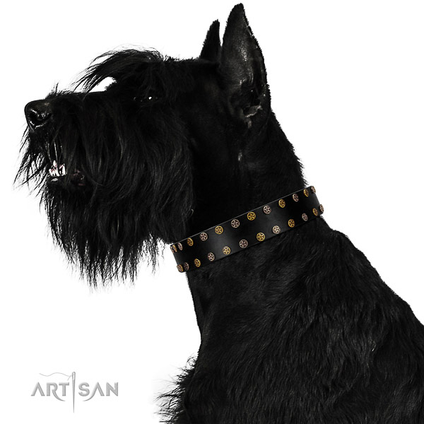 Significant natural leather dog collar with durable decorations