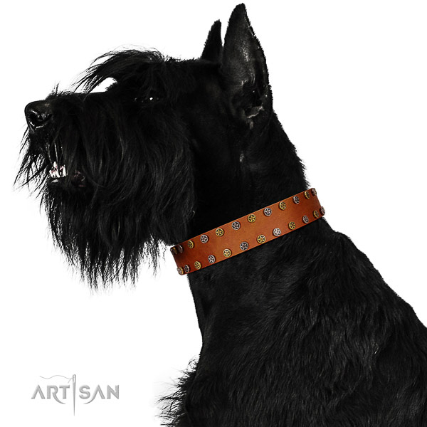 Handy use flexible full grain leather dog collar with decorations