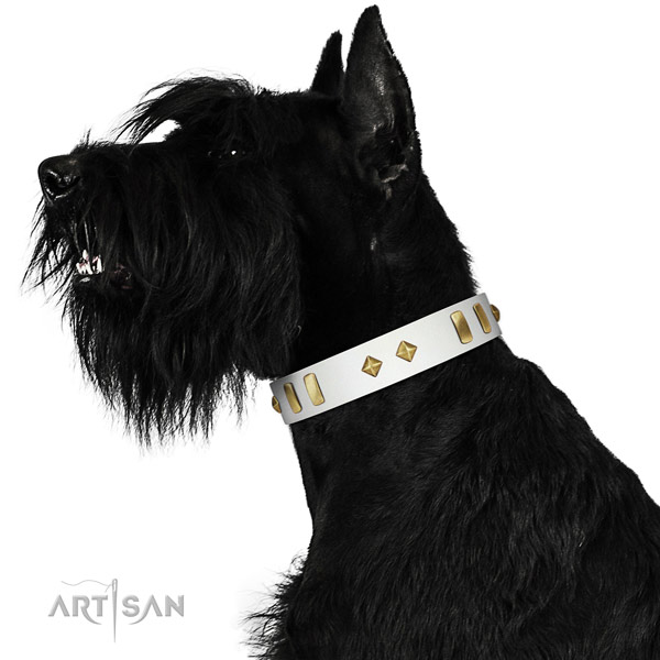 Daily walking quality genuine leather dog collar with adornments