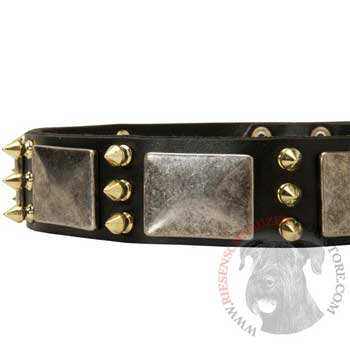 Stylish Leather Dog Collar for Riesenschnauzer