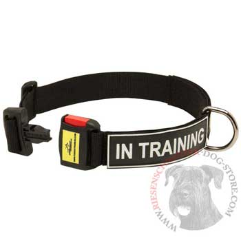 Nylon Dog Collar for Riesenschnauzer Police Training