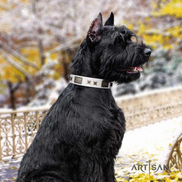 Riesenschnauzer handy use full grain natural leather collar with embellishments for your dog