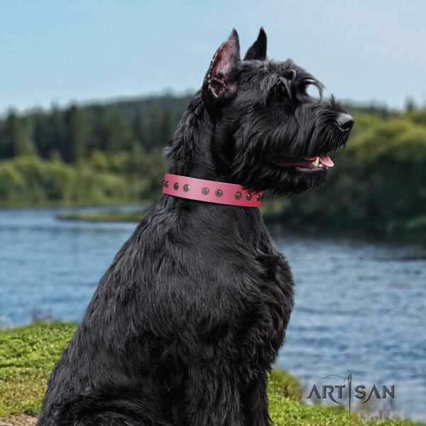Riesenschnauzer handy use full grain leather collar with decorations for your doggie
