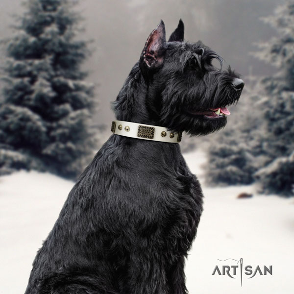 Riesenschnauzer daily walking full grain natural leather collar with adornments for your dog