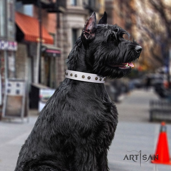 Riesenschnauzer easy wearing full grain leather collar with embellishments for your pet
