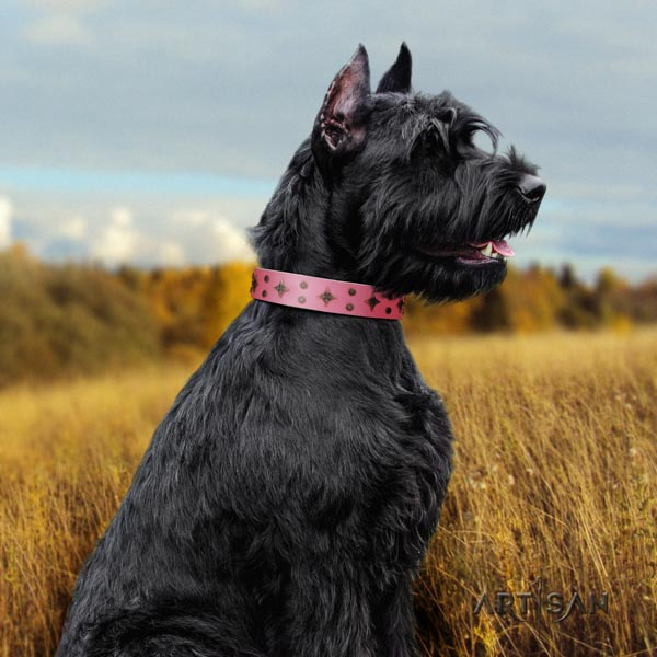 Riesenschnauzer basic training natural leather collar for your lovely dog
