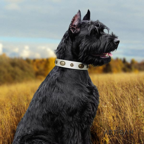 Riesenschnauzer handy use leather collar with embellishments for your dog