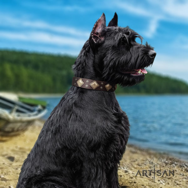 Riesenschnauzer daily use natural leather collar with decorations for your doggie