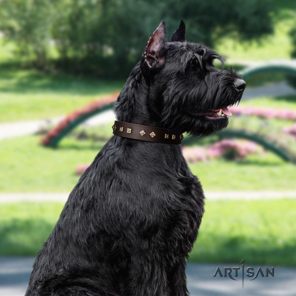 Riesenschnauzer easy wearing full grain leather collar with decorations for your pet