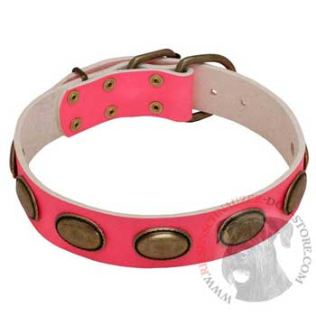 Pink Leather Riesenschnauzer Collar for Female Dogs