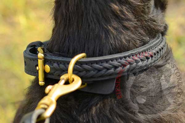 Welded brass D-Ring securely built in dog collar