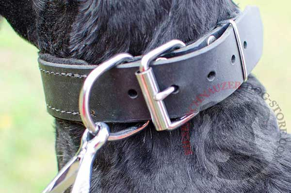 Cast durable D-Ring meant for leash fastening