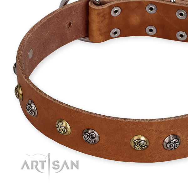 Genuine leather dog collar with stylish rust-proof studs