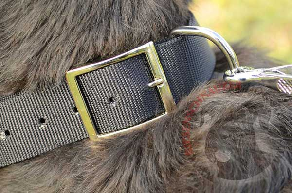 Metal D-ring built in dog collar for reliable leash connection