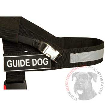 Riesenschnauzer Nylon Assistance Harness with Patches