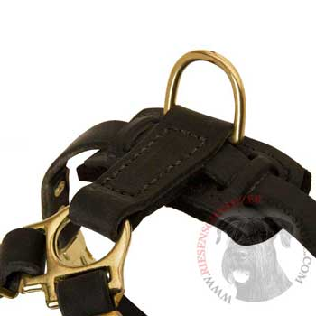 D-ring on Leather Riesenschnauzer Harness for Puppy Training