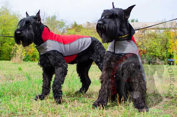 Riesenschnauzer Nylon Coat for Keeping Your Dog Warm