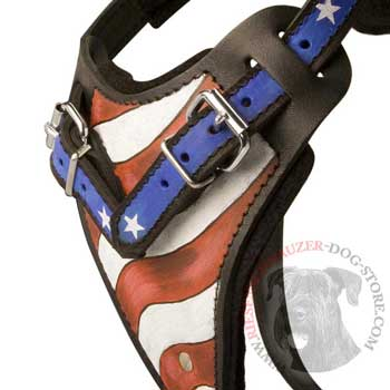 Riesenschnauzer Leather Harness With Hand Painted USA  Chest Plate