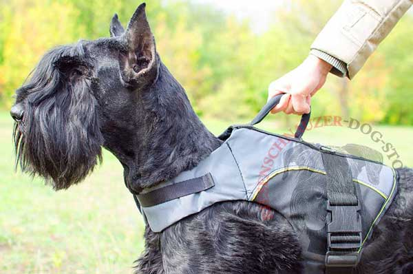 Riesenschnauzer Nylon Vest Harness with Easy in Use Quick Release Buckle