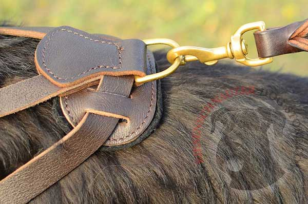 Rust Resistant D-ring for Quick Leash Attachment to Riesenschnauzer Harness