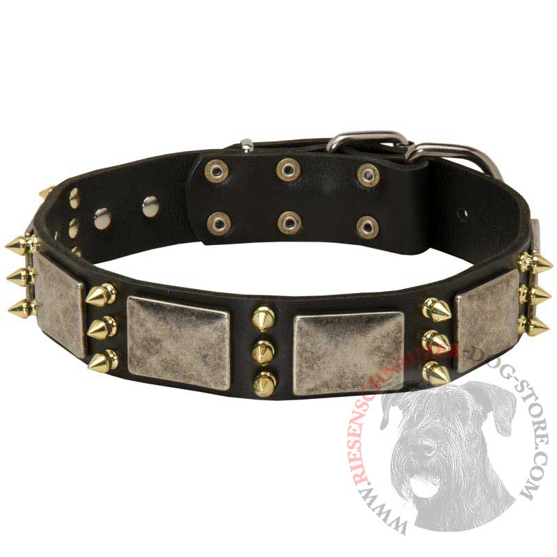 Riesenschnauzer Spiked Leather Collar with Nickel Plates