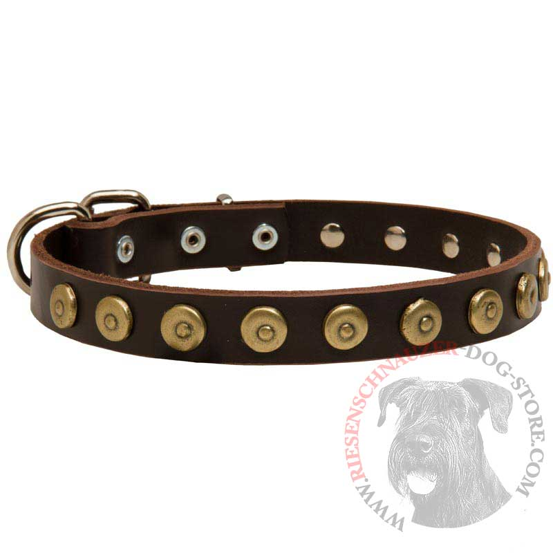 Leather Riesenschnauzer Collar with Brass Dotted Circles for Fashion Walking