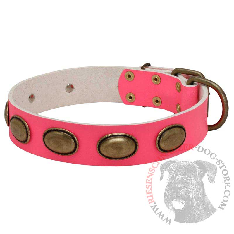 Pink Leather Riesenschnauzer Collar with Vintage Oval Plates