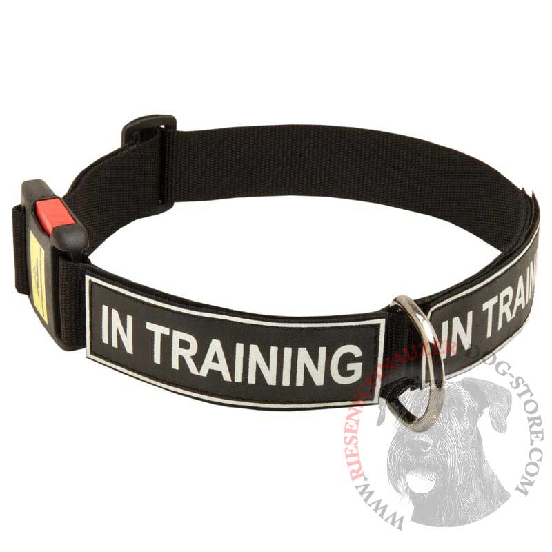 All Weather Nylon Riesenschnauzer Collar with ID Patches