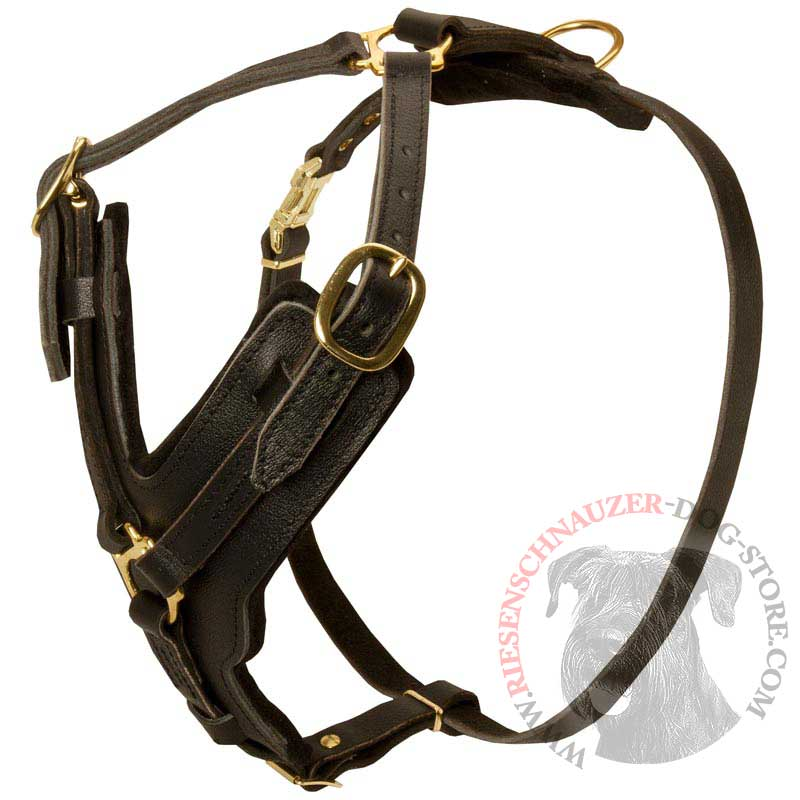 Padded Leather Riesenschnauzer Harness for Agitation Training