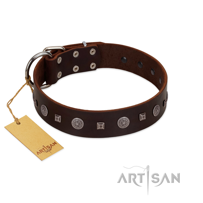 """Pure Sensation"" Exclusive FDT Artisan Brown Leather Riesenschnauzer Collar with Fancy Brooches and Studs"